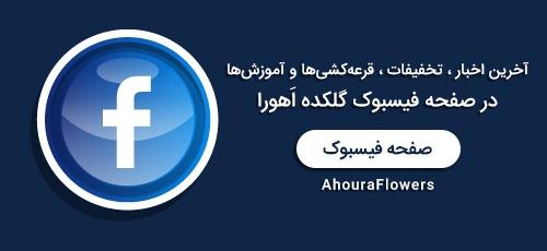عضویت در صفحه فیسبوک گلکده اَهورا