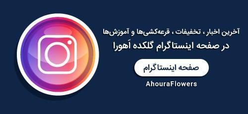 عضویت در صفحه اینستاگرام گلکده اَهورا