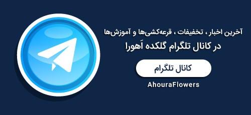 عضویت در کانال تلگرام گلکده اَهورا