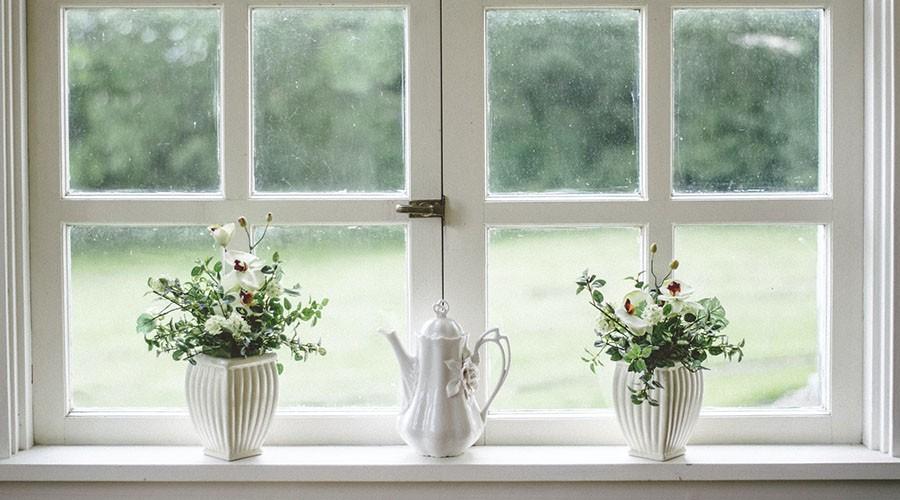 گیاهان خود را در خنک ترین بخش خانه قرار دهید.